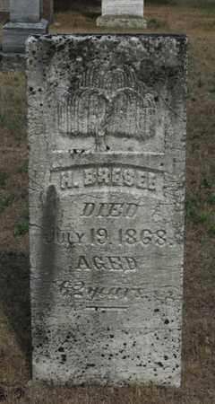 BRESEE, H. - Adams County, Wisconsin | H. BRESEE - Wisconsin Gravestone Photos