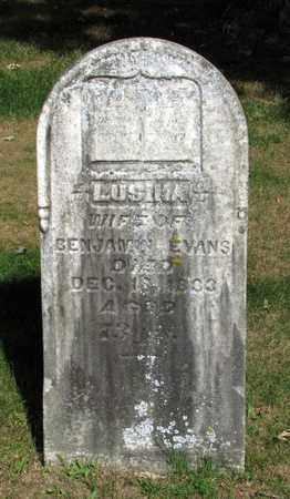 EVANS, LUSINA - Adams County, Wisconsin | LUSINA EVANS - Wisconsin Gravestone Photos