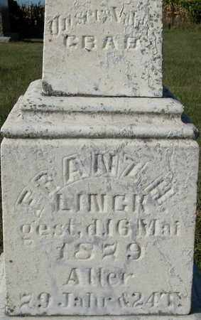 LINCK, FRANZ H. - Dodge County, Wisconsin   FRANZ H. LINCK - Wisconsin Gravestone Photos