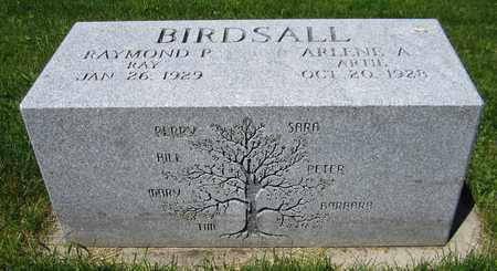 BIRDSALL, RAYMOND P. - Kewaunee County, Wisconsin   RAYMOND P. BIRDSALL - Wisconsin Gravestone Photos