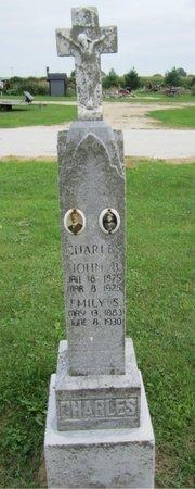 CHARLES, EMILY - Kewaunee County, Wisconsin | EMILY CHARLES - Wisconsin Gravestone Photos