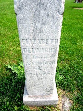 DELWICHE, ELIZABETH - Kewaunee County, Wisconsin | ELIZABETH DELWICHE - Wisconsin Gravestone Photos