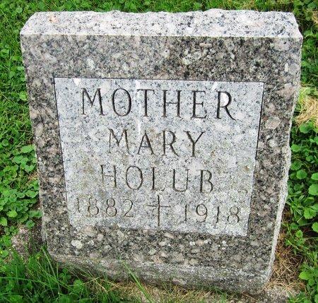 HOLUB, MARY - Kewaunee County, Wisconsin   MARY HOLUB - Wisconsin Gravestone Photos