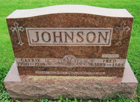 JOHNSON, CARRIE - Kewaunee County, Wisconsin | CARRIE JOHNSON - Wisconsin Gravestone Photos