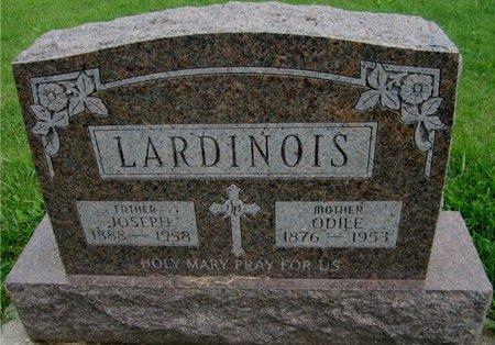LARDINOIS, ODILE - Kewaunee County, Wisconsin | ODILE LARDINOIS - Wisconsin Gravestone Photos