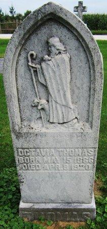 THOMAS, OCTAVIA - Kewaunee County, Wisconsin | OCTAVIA THOMAS - Wisconsin Gravestone Photos
