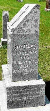 ANDREWS 101677655, CHARLES - Lafayette County, Wisconsin | CHARLES ANDREWS 101677655 - Wisconsin Gravestone Photos
