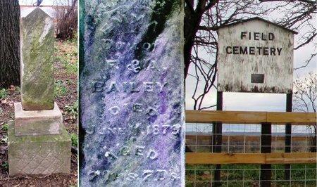 BAILEY 101604023, EMMA - Lafayette County, Wisconsin | EMMA BAILEY 101604023 - Wisconsin Gravestone Photos