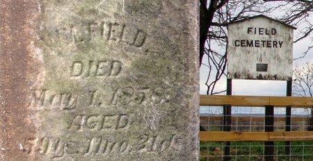 FIELD 101604132, WM (WILLIAM) - Lafayette County, Wisconsin   WM (WILLIAM) FIELD 101604132 - Wisconsin Gravestone Photos